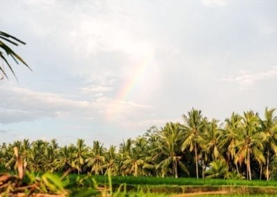 Rainbow Bali Ubud - Crédit Photo Clio Pajczer