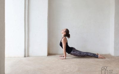 Lumière sur le Hatha Yoga