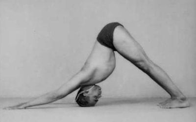 Adho Mukha Svanasana, Downward  facing dog