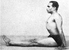 Dandasana Iyengar
